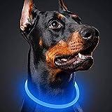 LED Leuchthalsband für Hunde   USB Aufladbar   LED Hundehalsband   MEGA HELLE   Leuchtend Wiederaufladbares und Längenverstellbareres   DREI Beleuchtungsmodi für Hunde und Katzen - Blue