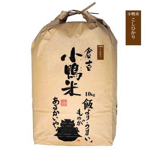 コシヒカリ 小鴨米 白米(精米) 鳥取県 倉吉市産 令和2年度産 新米 10kg