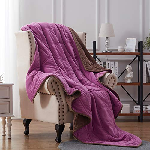 NexHome Blanket Fleece Blanket Soft Blanket Microfiber Twin Queen King Size Plush Throw Blankets for Couch Fuzzy Blanket All Season Sofa Bed Blanket Warm and Cozy Pink (Brown/Purple, 60' 80' Twin)