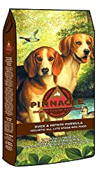 Primal Dog Food Vs Stella And Chewy S