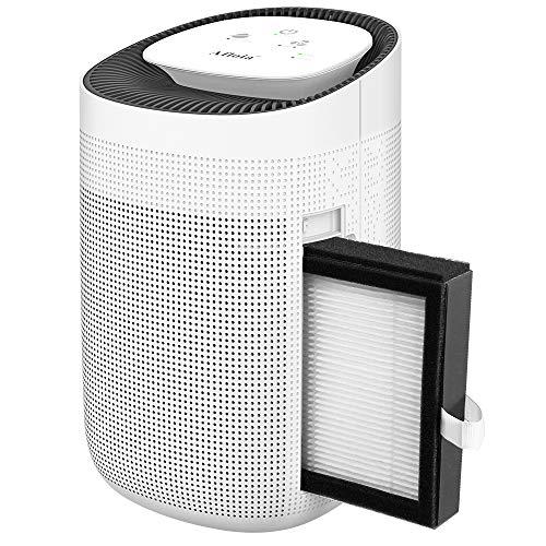 Elektrischer Luftentfeuchter 1000ml kompakt tragbar leise entfeuchter mini Raumentfeuchter Dehumidifier Luftreiniger mit HEPA-Filter für Schrank, Badezimmer, Keller, Schlafzimmer, Büro