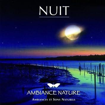 Ambiance Nature  Nuit
