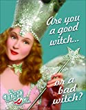 Desperate Enterprises The Wizard of Oz - are You A Good Witch Or A Bad Witch Tin Sign, 12.5' W x 16' H