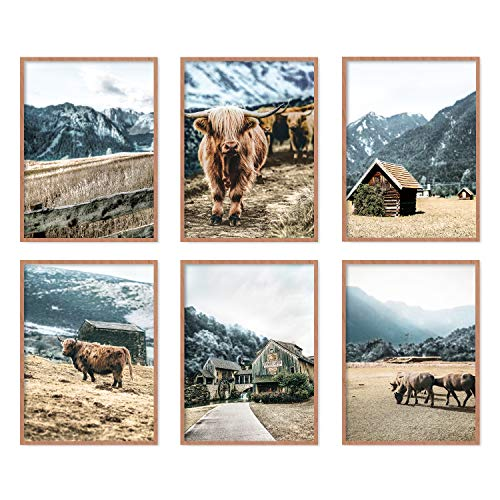YUMKNOW Farmhouse Cow Wall Decor - Unframed Set of 6, 8x10, Modern Country Highland Cow Pictures for Bathroom, Bedroom Cottage Rustic Art Vintage Posters for Living Room Cow Decor, Blue Stuff Gifts