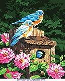 DIY Pintura al óleo por números Kits para niños y adultos y principiantes, ANBOSE Pinte el color según los números en el lienzo 16x20 pulgadas, Dibujo con Pinceles Decoración de regalo de Navidad