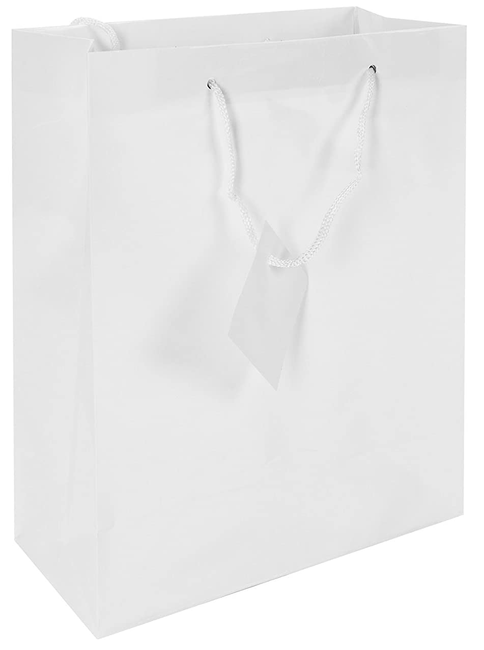 Fun Express Medium White Gift Bags - Pack of 12
