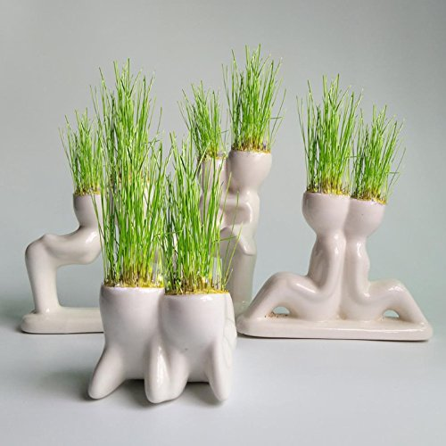 KOFUN Nette Mini Roman Bonsai Kopf Gras Puppe Haar Weiß Faule Mann Vertrauen Pflanze Garten DIY