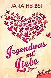 Irgendwas mit Liebe: Roman
