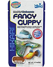 B&K Hikari Fancy Guppy Specialized Food for Livebearers Fish Food 22g (0.7oz)