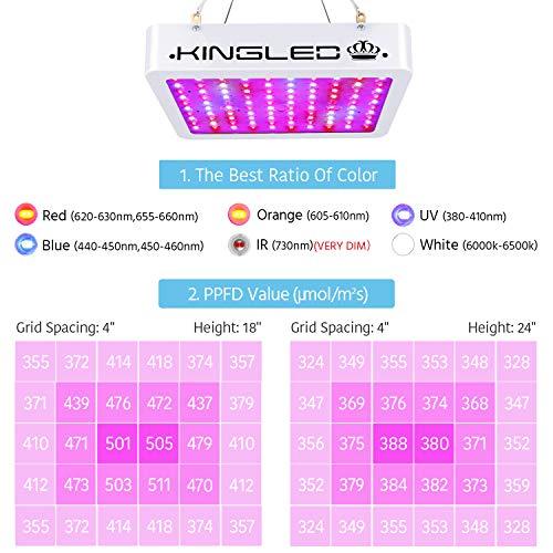 King Plus 1000w LED Grow Light