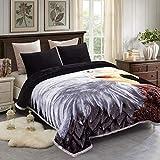 JML Fleece Blanket King Size 85' x93', Plush Korean Style Mink Blanket - 10 Pounds, 2 Ply A&B Printed, Silky Soft and Warm Raschel Bed Blanket, Eagle/Lion