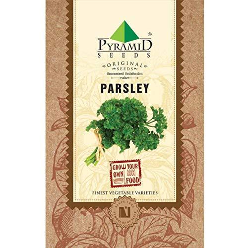 Pyramid Seeds Parsley Herb Seeds (2 g)