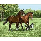 Pintura por números,Animal horse dog Pintura por Números para Adultos Bricolaje Lienzo Preimpreso Pintura al óleo Arte Decoración del Hogar Reducir la Ansiedad,40cmX50cm(sin marco).