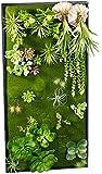 Carlo Milano Pflanzbild: Vertikaler Wandgarten Klaus mit Deko-Pflanzen, 50x100 cm (Pflanzen Bild)