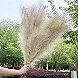 Artificial Grandes Pampas Hierba 43 pulgadas / 110cm Pampas de hierba de hierba High Faux Reed Plumes, de bodas Decoración de ramo de flores para la decoración del hogar Jarrón Llenado de 5 tallos