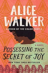 Processing The Secret of Joy by Alice Walker