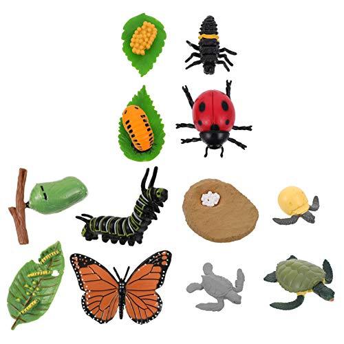 Angoily 12 figuras de animales de granja, vida útil del ciclo de mariposa, tortuga e insecto figuras de plástico, vida útil de los juguetes, kit educativo