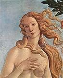 Das Museum Outlet–Geburt der Venus Detail 3by