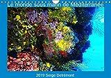 Le monde sous marin de mediterranee (calendrier mural 2019 din a4 horizontal) - les merveilles de la (Calvendo Animaux): Les merveilles de la Méditerranée (Calendrier mensuel, 14 Pages )