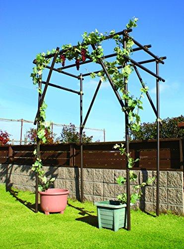 ガーデンアグリパイプ φ33mm 全4規格 単管パイプ 軽くて丈夫 おしゃれな単管パイプ 畑や庭の囲い、果樹棚、防獣、鳥よけ、風よけ用の支柱に (0.5m)