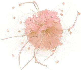 Beaupretty魅惑的な帽子羽メッシュネットベールパーティー帽子ピルボックス帽子羽の魅惑的なキャップレディース結婚式宴会カクテルパーティー(ピンク)
