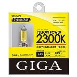 カーメイト 車用 ハロゲン ヘッドライト GIGA イエローパワー H8 2300K 750lm イエロー BD1035