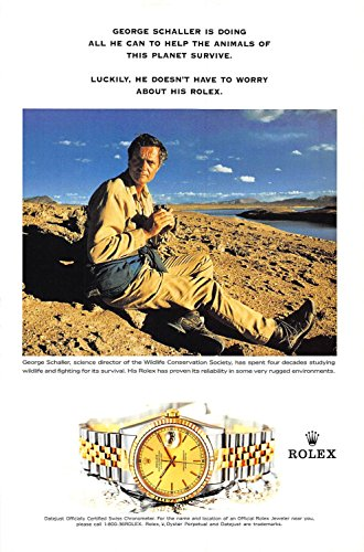 Print Ad 2000 Rolex Watch George Schaller is duing all he can to help the animals