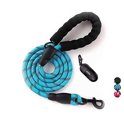 Hundeleine mit weich gepolstertem Griff und hochreflektierenden Fäden, Nylon, strapazierfähige, Sicherheit, 1,5 m,für kleine, mittelgroße und große Hunde (Blau)