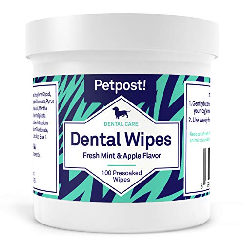 Petpost | Dental Wipes for Dogs  Bad Breath Plaque and Tooth Decay Gone  100 Presoaked Pads in Natural Tooth Cleaning Solution