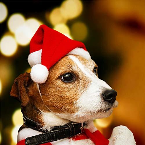 ZHAOZX Cane da Compagnia Gatto Cappello da Babbo Natale Decorazioni Natalizie Ornamenti Capodanno per Cani Accessori Costume Piccolo Negozio di Animali Carino