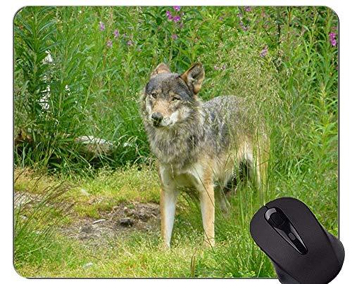 Rutschfeste Gummi-Gaming-Mausunterlage, Wolf Nature Animal Hunter Furry-Mausunterlagen
