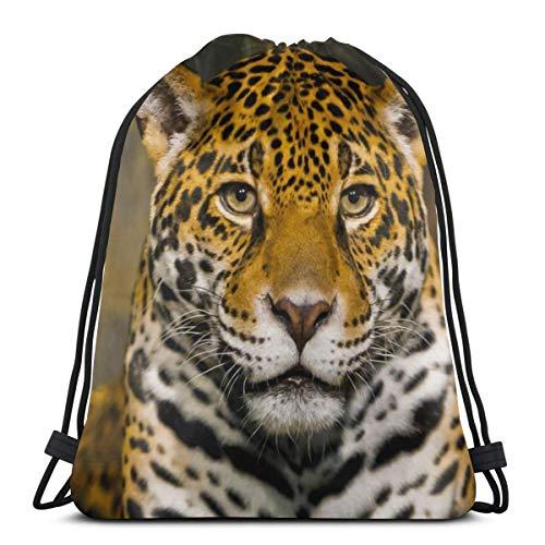 Rasyko Rucksack mit Kordelzug, Motiv: große Katze, Wildkatze Jaguar Maulkorb, Predator, für Männer und Frauen, 42,9 x 35,6 cm