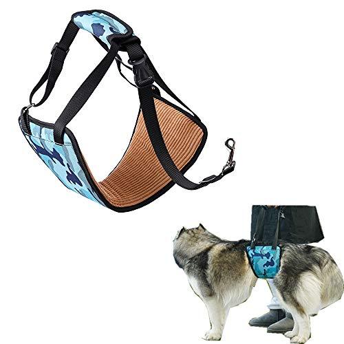 Cinturón de seguridad asistido por una mascota, cabestrillo de asistencia ideal para la rehabilitación de perros después de cirugías ortopédicas, ayude a su perro a superar estos obstáculos, sin dolor