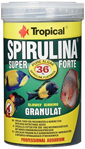 TROPICAL Super Spirulina Forte Granulat Nourriture pour Aquariophilie 1000 ml
