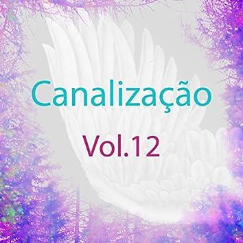 Canalização, Vol. 12 (Guias Espirituais)