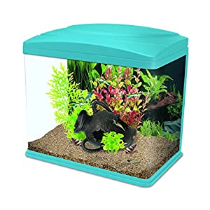 Interpet Fishbox LED Aquarium Fish Tank, 13 L – Blue