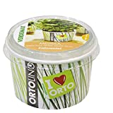 3 vasos de hierbas aromáticas para cultivo de hierbas aromáticas