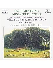 English String Miniatures 3