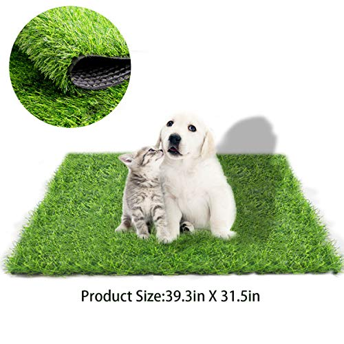 Dog Pad Outdoor