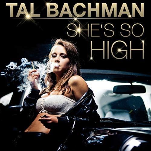 Tal Bachman