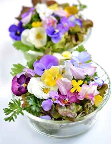 Sortenmischung aus Pflanzen mit essbaren Blüten - samen