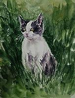 タキシード猫黒猫ペットペイントbyNumbersキットブラシとアクリル顔料付き大人向けDIYキャンバスペインティング初心者40X50Cm