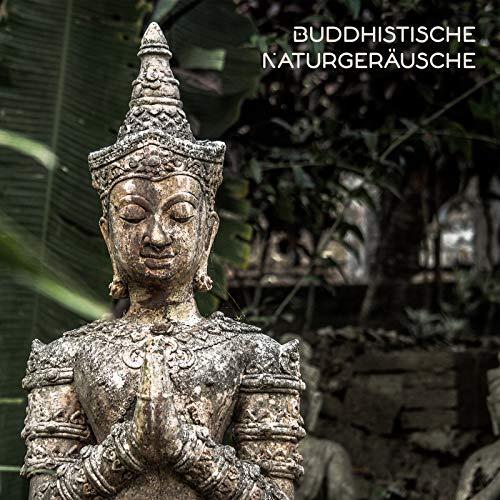 Buddhistische Naturgeräusche: Entspannende Zen-Hintergrundmusik für Meditation, Yoga, Entspannung, Ganzheitliche Spa-Behandlungen, Heilmassage, Reiki