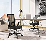 HARBLAND Office Chair Ergonomic Desk Chair Cumputer Chair with Adjustable Lumbar Support Modern Executive Adjustable Rolling Swivel Chair Comfortable Home Office Chair