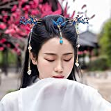 Houchu Chinese Hair Sticks Hanfu Long Tassel Cloisonne Vintage Hair Stick Hair Crown Set Classical Style Handmade Hairpin