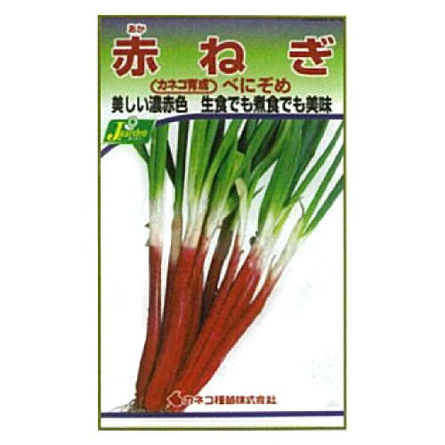 カネコ種苗 園芸・種 KS300シリーズ 赤ねぎ べにぞめ 野菜300 249