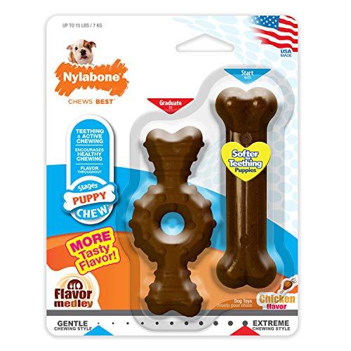 Nylabone Kit pour Chiot Qui Font Leurs Dents Pack de Deux Os Dentaires à Mâcher/Os Souple/Os Extrême Pesant Jusqu'à 7 kg1 Unité