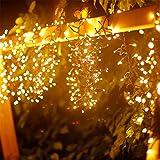Aigostar - Luces LED para árbol de navidad, 250 LED, 10 metros, luz cálida 2400K. Protección IP44 impermeable, apto para exterior e interior. Guirnalda de luz LED decorativa jardín, fiestas o Navidad