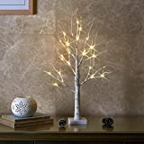 EAMBRITE 2FT 24LT Warm White LED Battery Operated Birch Tree Light with Timer Tabletop Tree Light Jewelry Holder Decor for Home Party Wedding