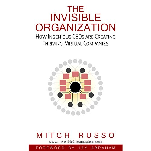The Invisible Organization audiobook cover art